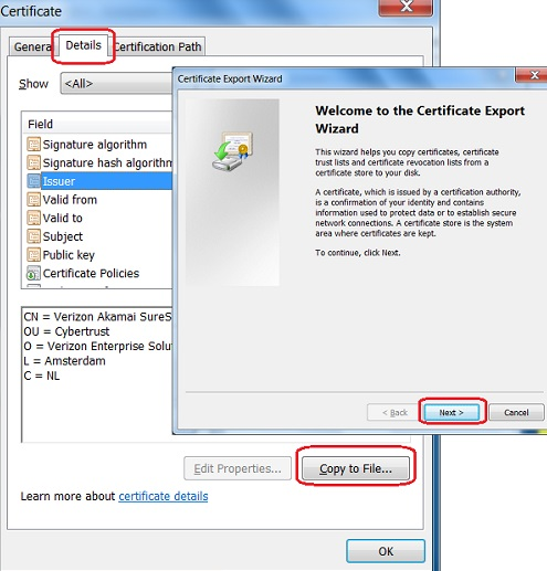 IE Export Server Certificate