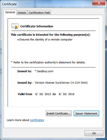 IE - View Server Certificate